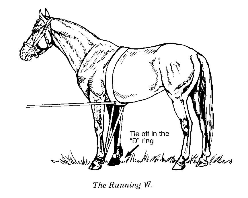Here is an illustration of a Running W setup.