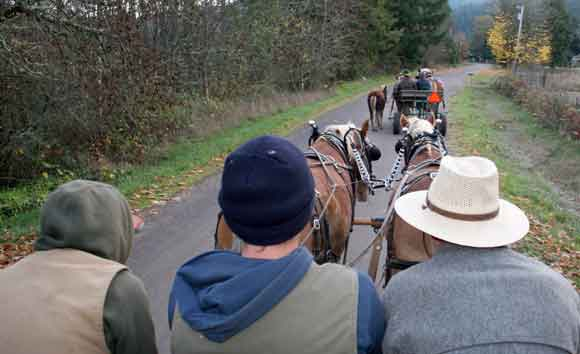 drving had handling draft horses