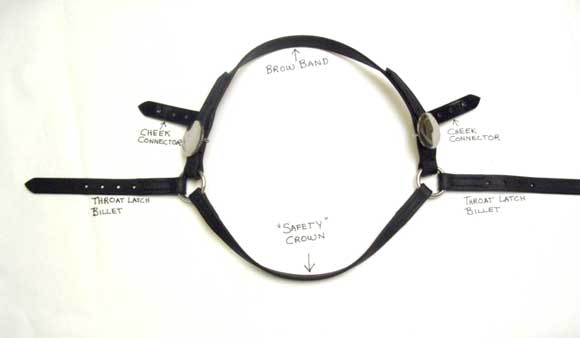 browband-crown-throatlatch assembly
