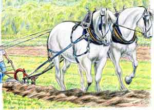 knight on horseback vintage drawing